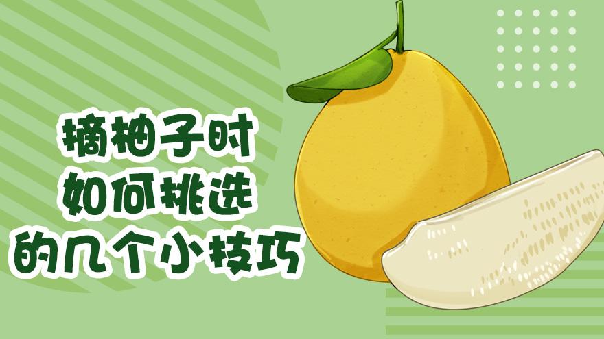 在柚子时如何挑选的几个小技巧