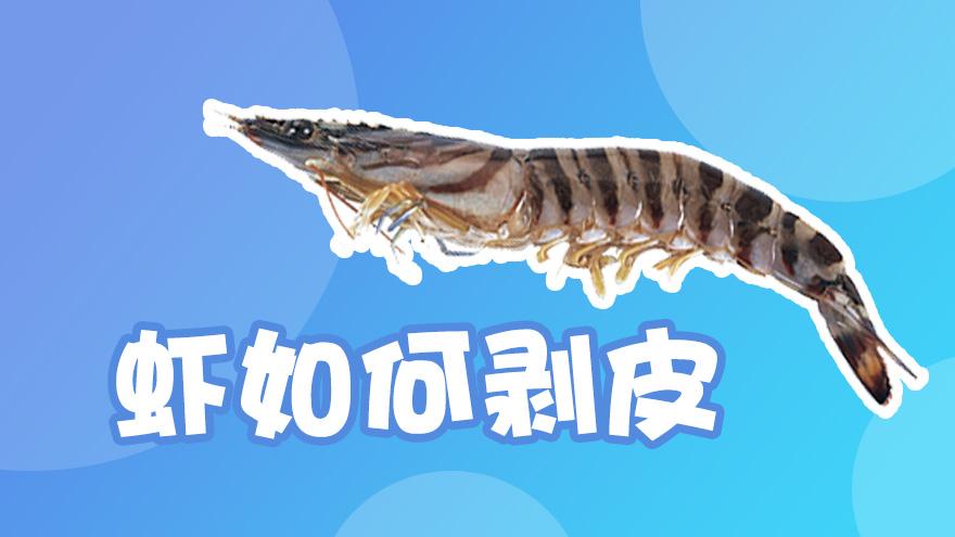 虾如何剥皮