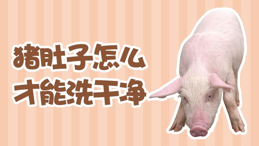 猪肚子怎么才能洗干净