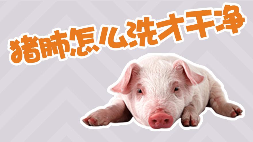 猪肺怎么洗才干净