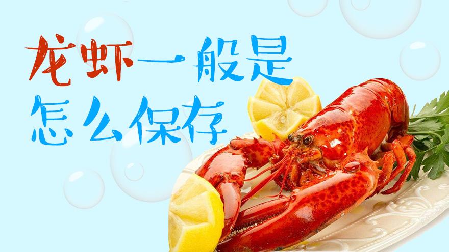 龙虾一般是怎么保存