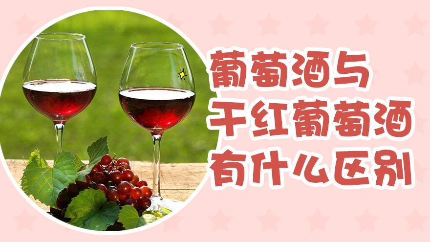 葡萄酒与干红葡萄酒有什么区别