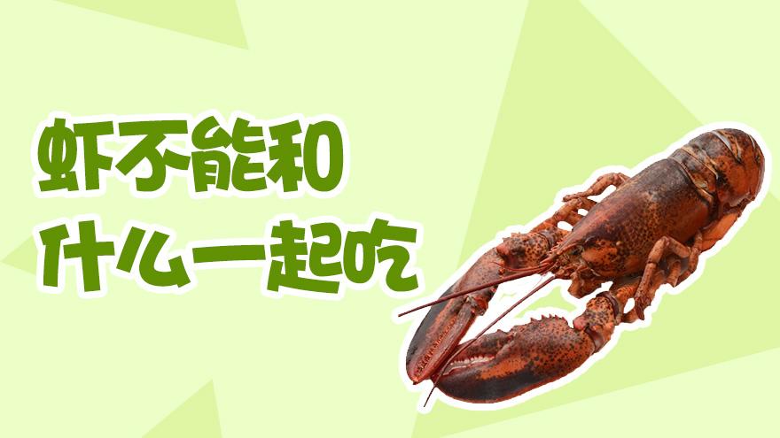 虾不能和什么一起吃