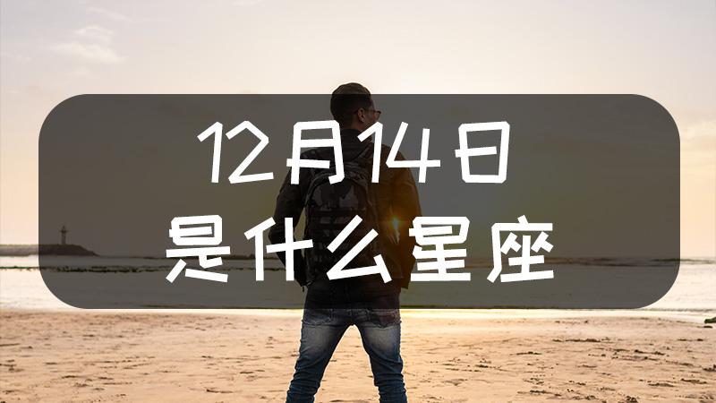 12月14日是什么星座什么性格