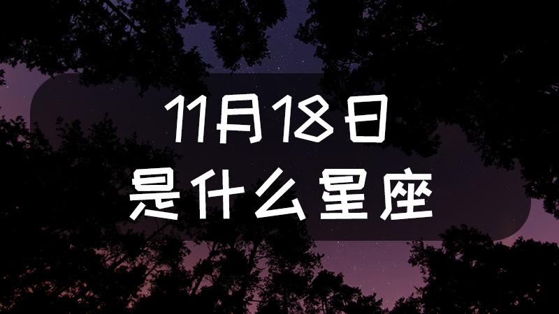 11月18日是什么星座什么性格