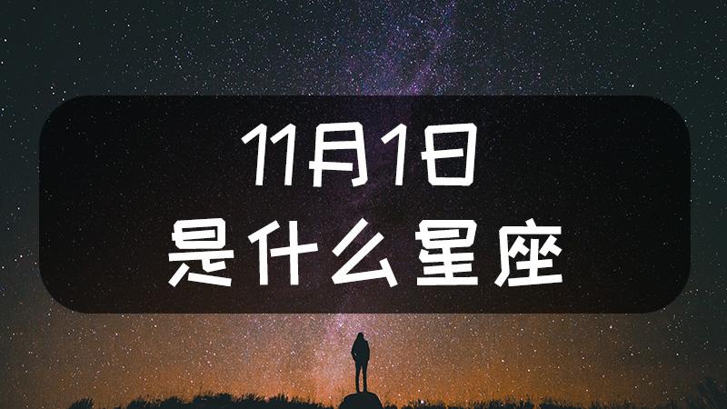 11月1日是什么星座什么性格