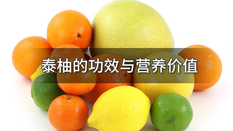 泰柚的功效与营养价值