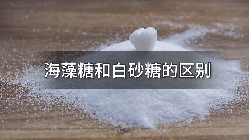 海藻糖和白砂糖的区别