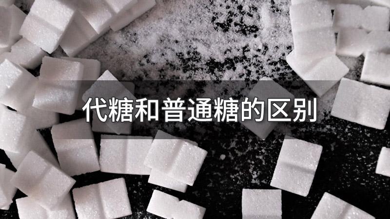代糖和普通糖的区别