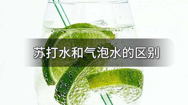 苏打水和气泡水的区别