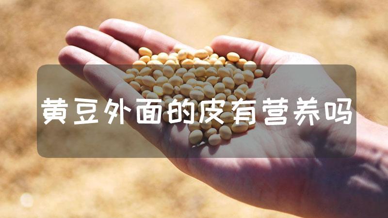 黄豆外面的皮有营养吗