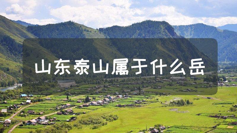 山东泰山属于什么岳