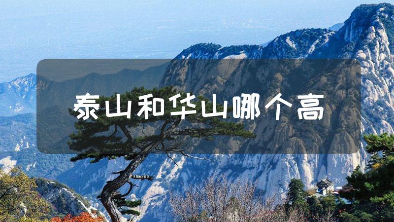 泰山和华山哪个高