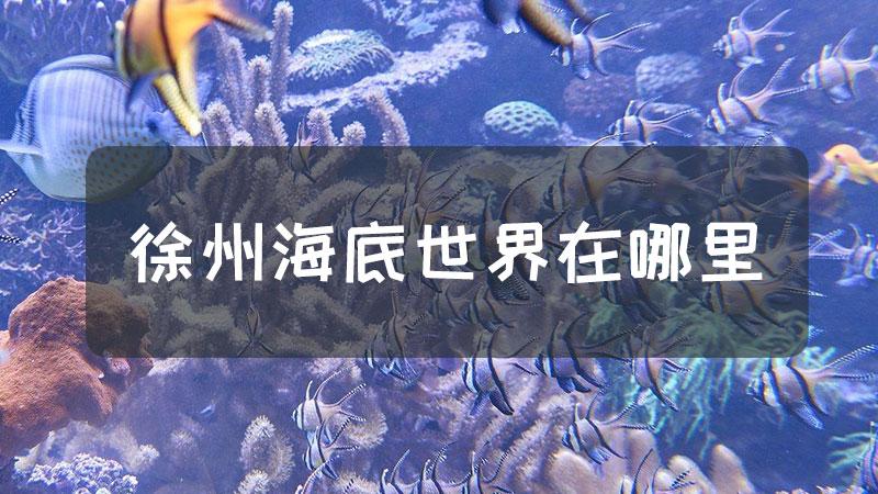 徐州海底世界在哪里