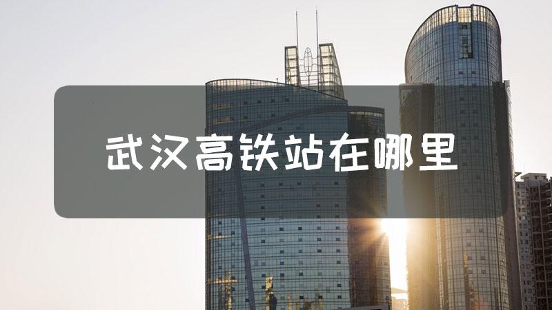 武汉高铁站在哪里