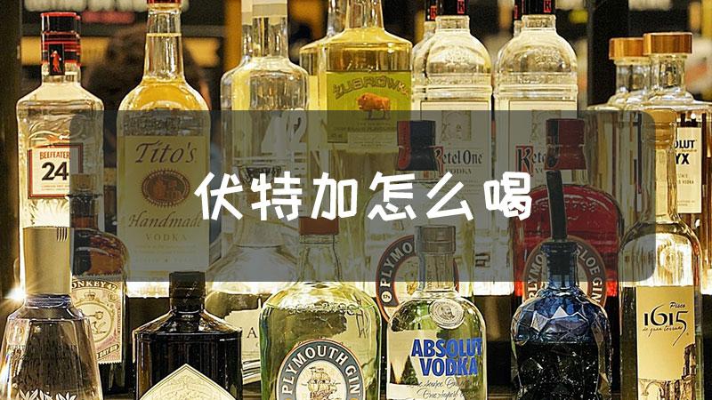 伏特加怎么喝